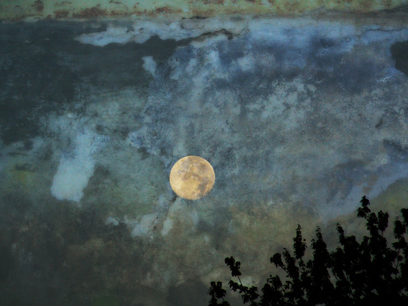 "Moon Over Lake 24""x36"""